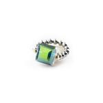 Rings R1004